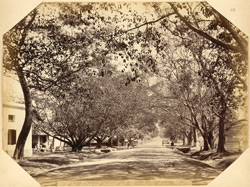 The Strand Road at Gowhatty [sic Gauhati] from West. Assam.